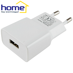 usb-adapter-2100-ma-220v